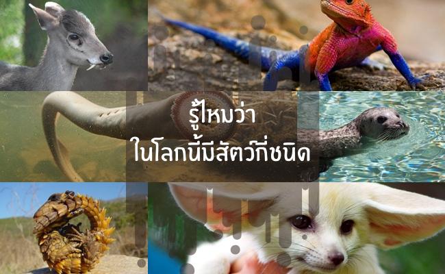 รู้ไหมว่าในโลกนี้มีสัตว์กี่ชนิด