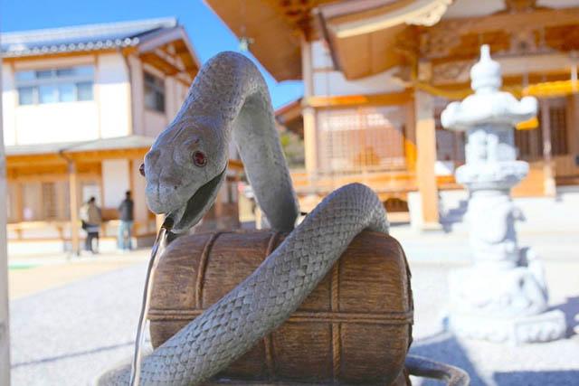 งูขาว ผู้รับใช้เบนไซเทน